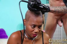 Ghetto Gaggers Poorly Shorn